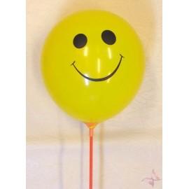 Baloane Colorate Smile